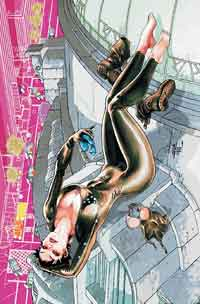 batman-and-catwoman-the-two-comics-to-watch-on-dc-comics-relaunch-reboot-new52-catwoman-1-cover