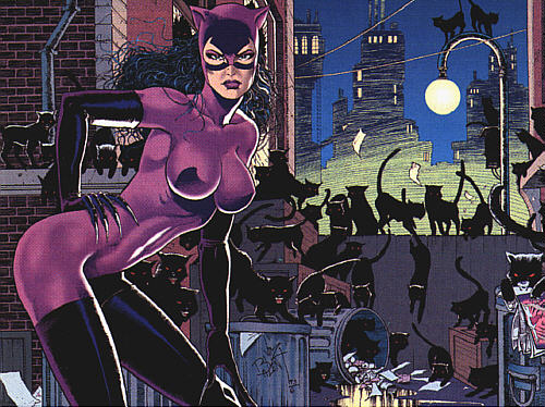 At long last There will be Alternative Catwoman Costumes (skins) in Arkham City » Catwoman Skins for Catwoman in Arkham City u2013 The Sexy Jim Balent Costume ... & Catwoman Skins for Catwoman in Arkham City u2013 The Sexy Jim Balent ...